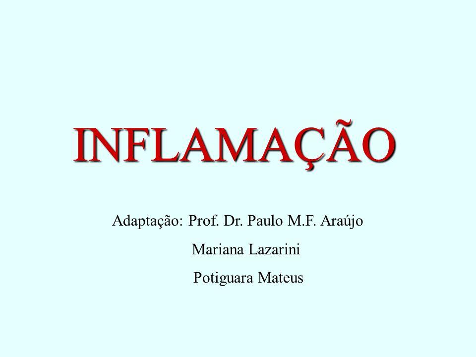 Adaptação: Prof. Dr. Paulo M.F. Araújo