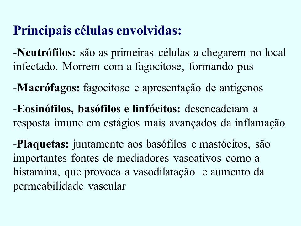 Principais células envolvidas: