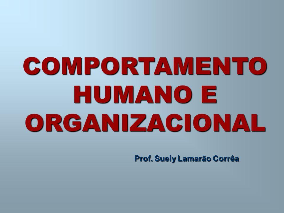 Prof. Suely Lamarão Corrêa