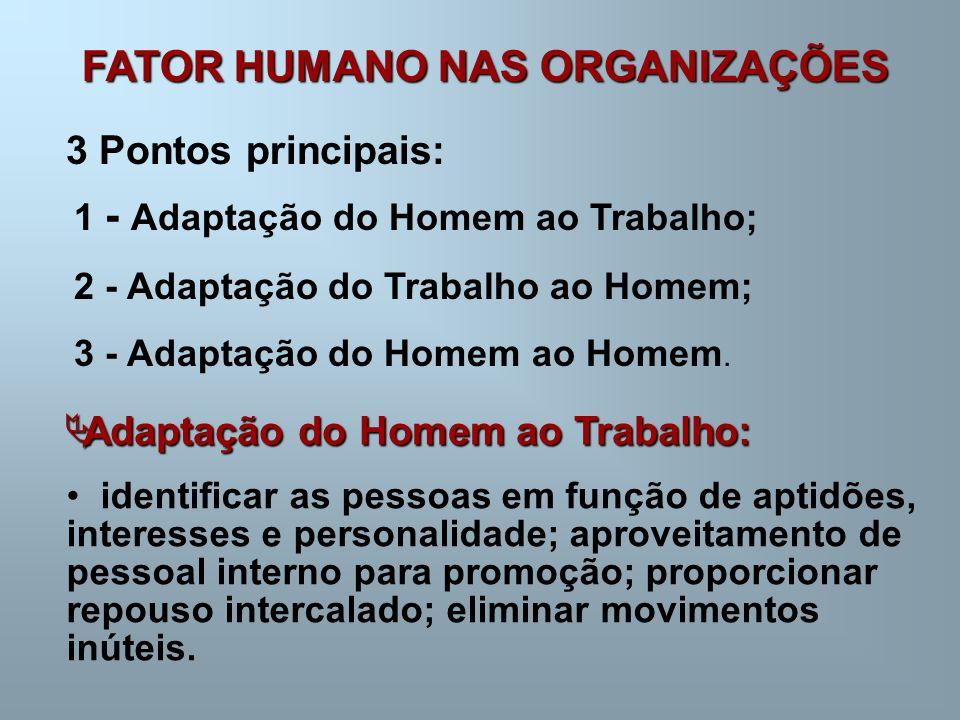 FATOR HUMANO NAS ORGANIZAÇÕES