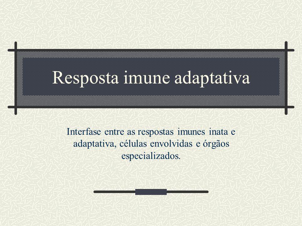 Resposta imune adaptativa
