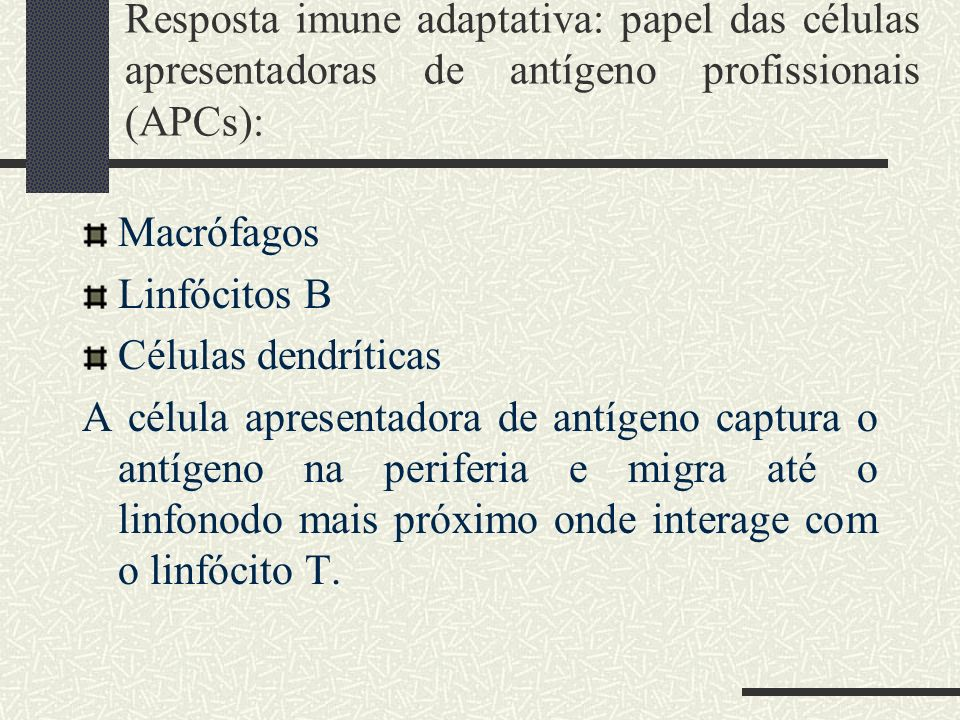 Resposta imune adaptativa: papel das células apresentadoras de antígeno profissionais (APCs):