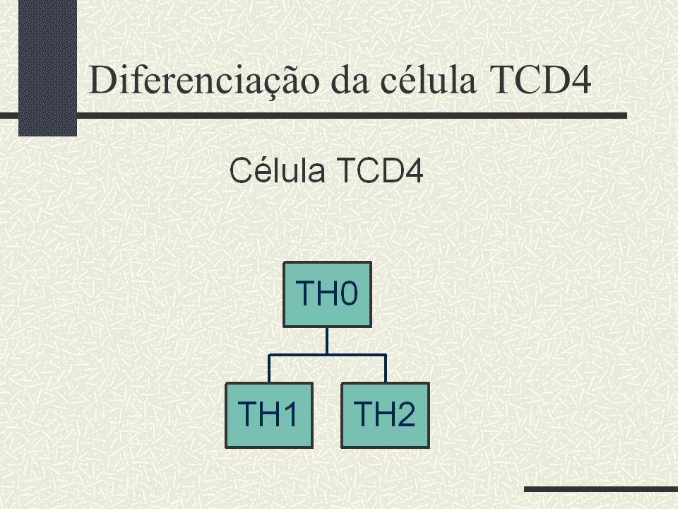 Diferenciação da célula TCD4