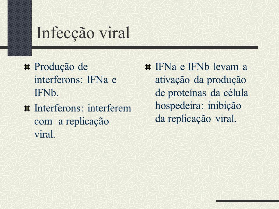 Infecção viral Produção de interferons: IFNa e IFNb.