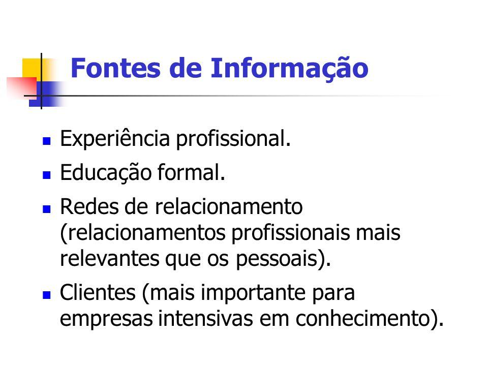 Fontes de Informação Experiência profissional. Educação formal.