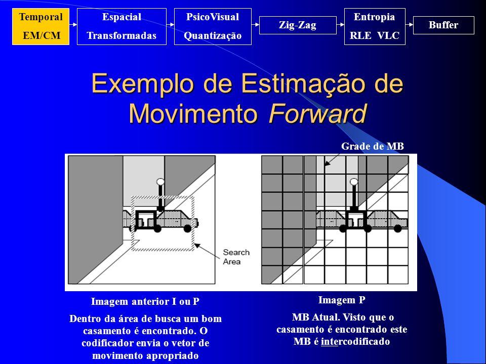 Exemplo de Estimação de Movimento Forward
