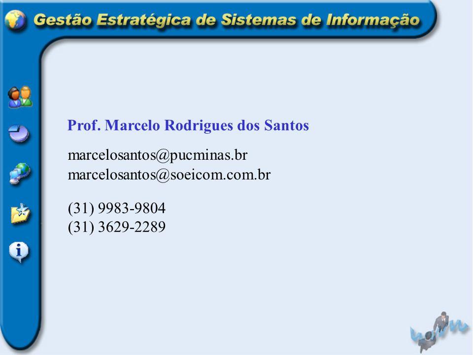 Prof. Marcelo Rodrigues dos Santos