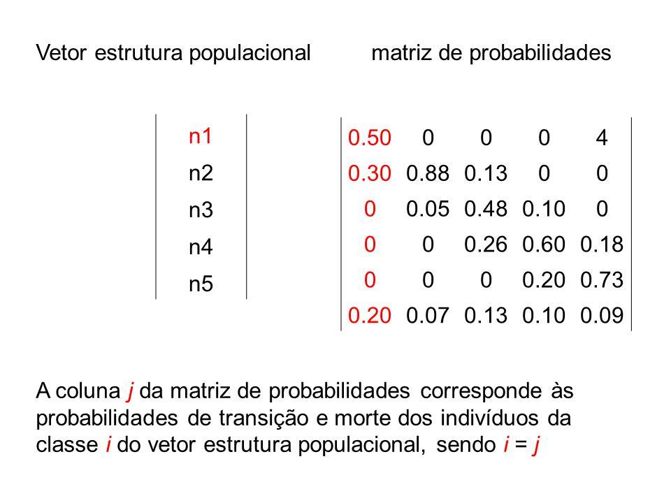 Vetor estrutura populacional matriz de probabilidades