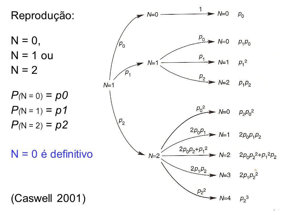 Reprodução: N = 0, N = 1 ou. N = 2. P(N = 0) = p0. P(N = 1) = p1. P(N = 2) = p2. N = 0 é definitivo.