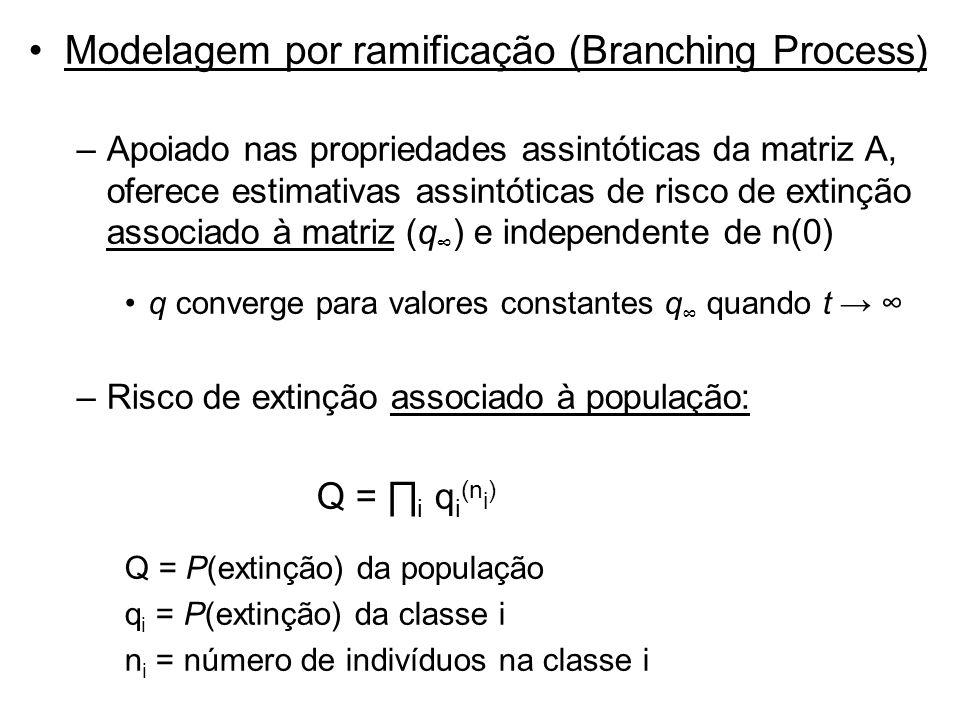 Modelagem por ramificação (Branching Process)