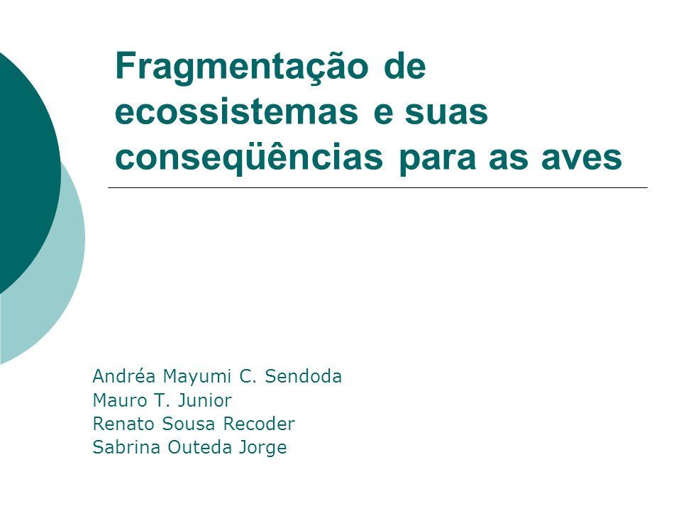 Fragmentação de ecossistemas e suas conseqüências para as aves