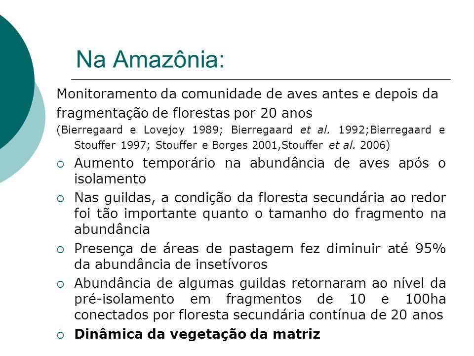 Na Amazônia: Monitoramento da comunidade de aves antes e depois da