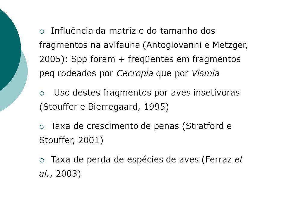 Influência da matriz e do tamanho dos fragmentos na avifauna (Antogiovanni e Metzger, 2005): Spp foram + freqüentes em fragmentos peq rodeados por Cecropia que por Vismia