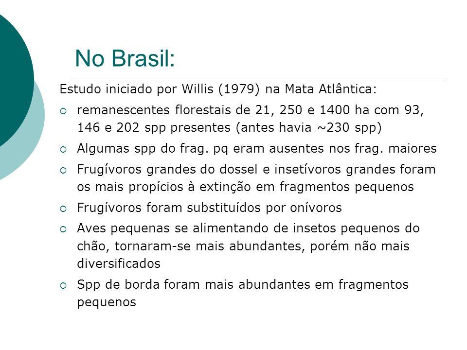 No Brasil: Estudo iniciado por Willis (1979) na Mata Atlântica: