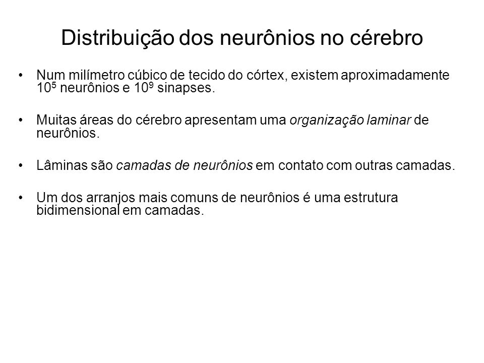 Distribuição dos neurônios no cérebro