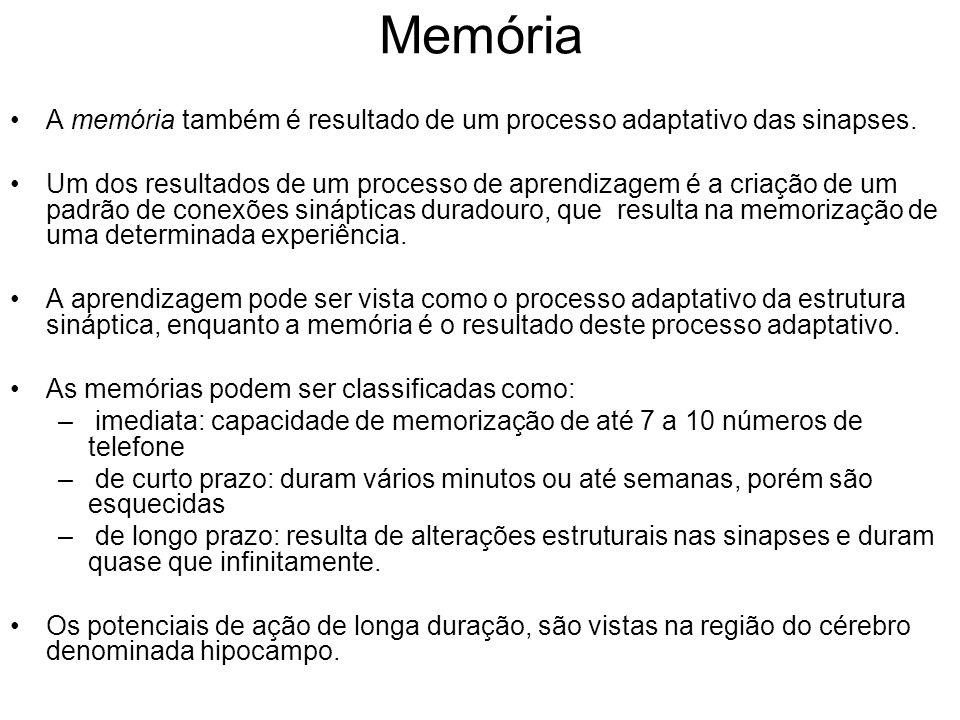 Memória A memória também é resultado de um processo adaptativo das sinapses.