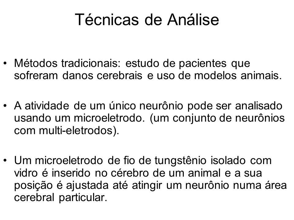 Técnicas de Análise Métodos tradicionais: estudo de pacientes que sofreram danos cerebrais e uso de modelos animais.