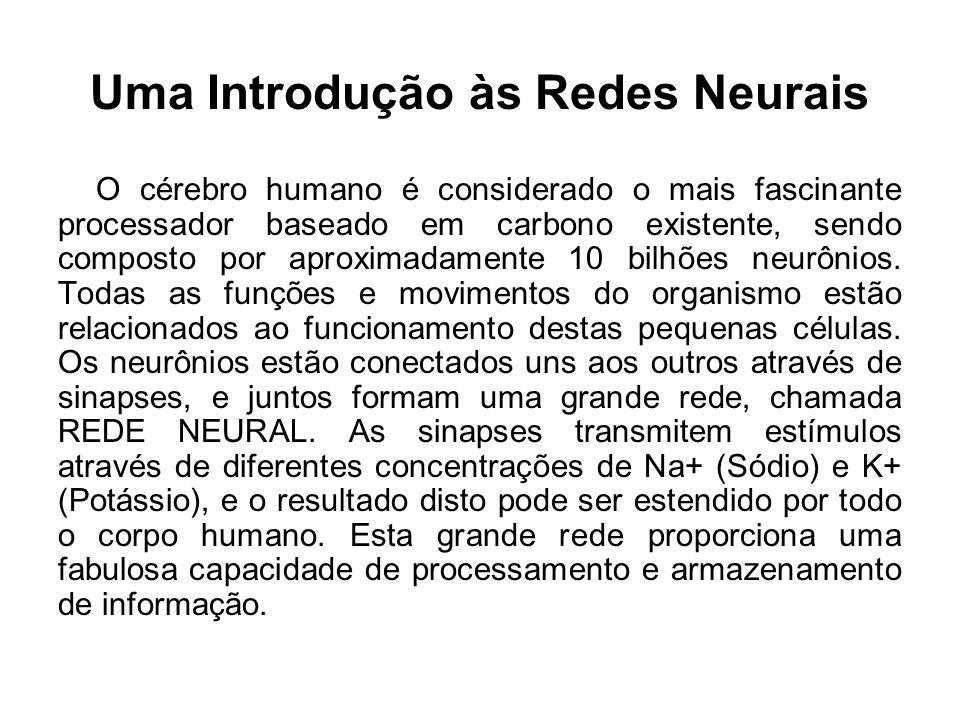 Uma Introdução às Redes Neurais