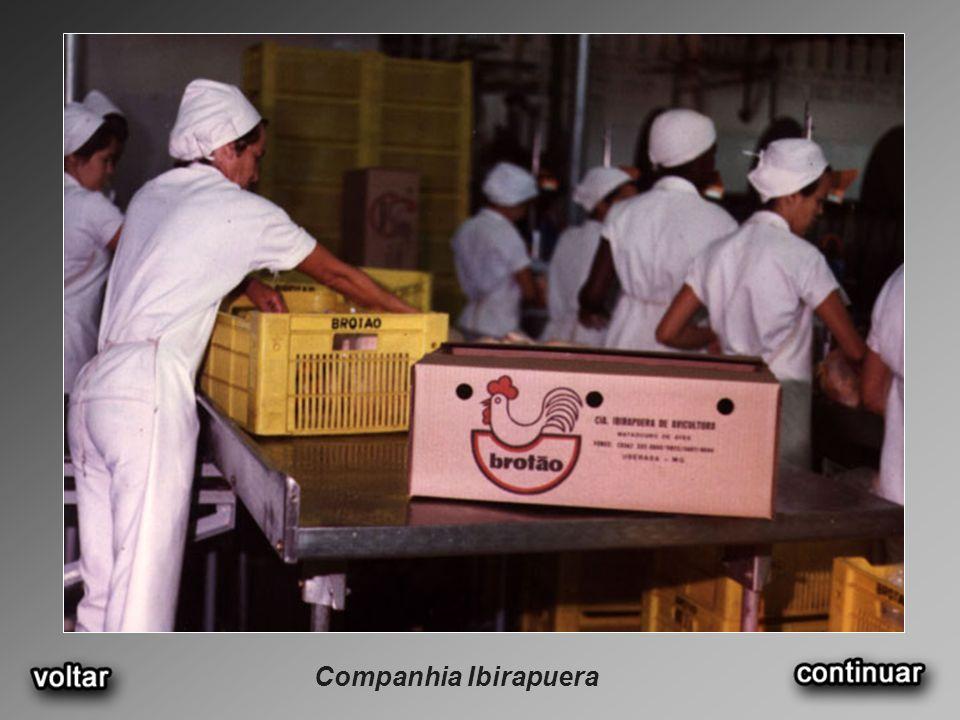 Companhia Ibirapuera