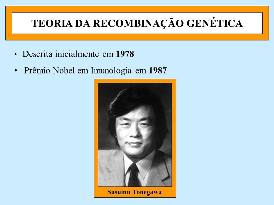 TEORIA DA RECOMBINAÇÃO GENÉTICA