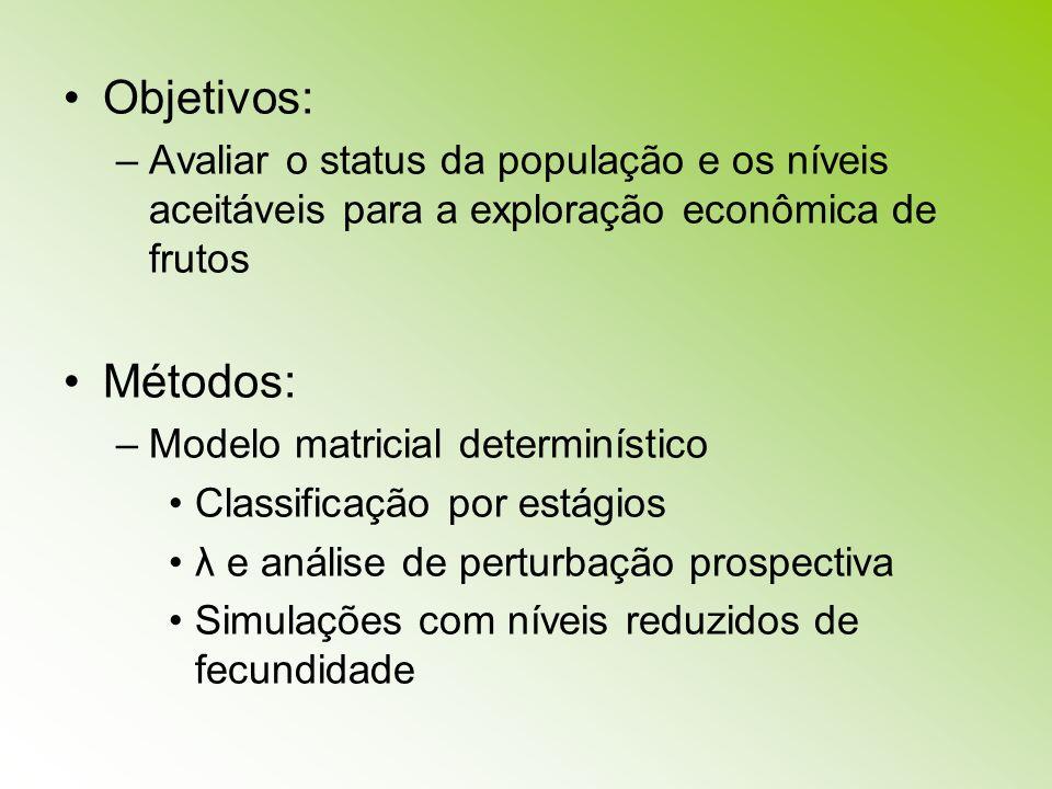 Objetivos:Avaliar o status da população e os níveis aceitáveis para a exploração econômica de frutos.
