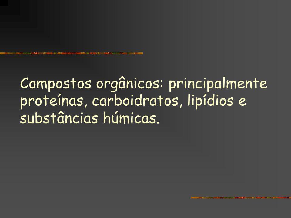 Compostos orgânicos: principalmente proteínas, carboidratos, lipídios e substâncias húmicas.