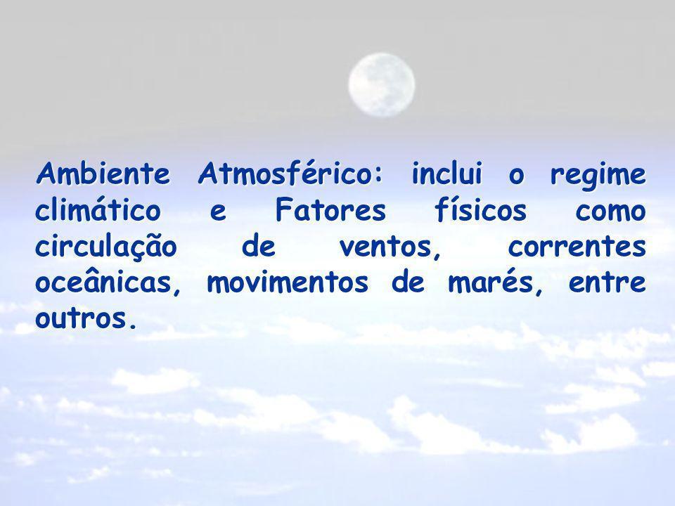 Ambiente Atmosférico: inclui o regime climático e Fatores físicos como circulação de ventos, correntes oceânicas, movimentos de marés, entre outros.