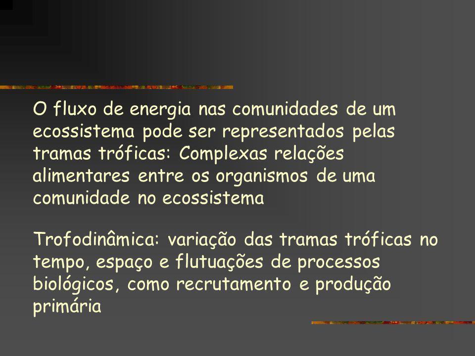 O fluxo de energia nas comunidades de um ecossistema pode ser representados pelas tramas tróficas: Complexas relações alimentares entre os organismos de uma comunidade no ecossistema