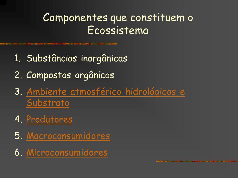 Componentes que constituem o Ecossistema