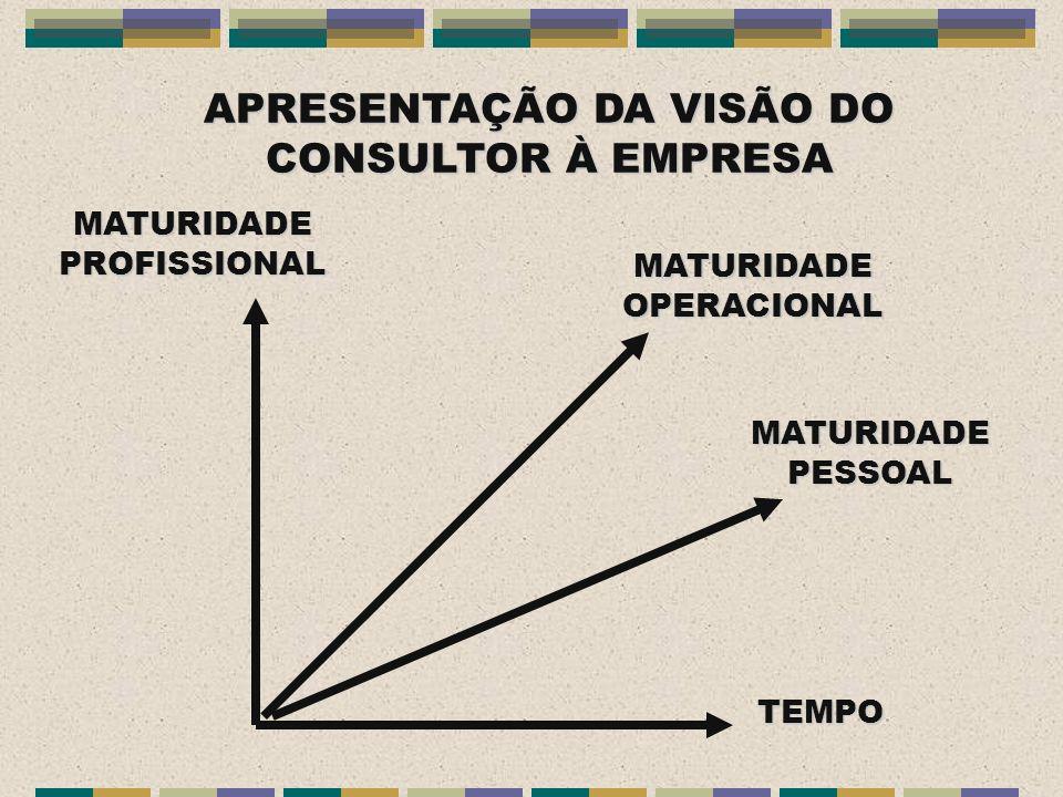 APRESENTAÇÃO DA VISÃO DO CONSULTOR À EMPRESA