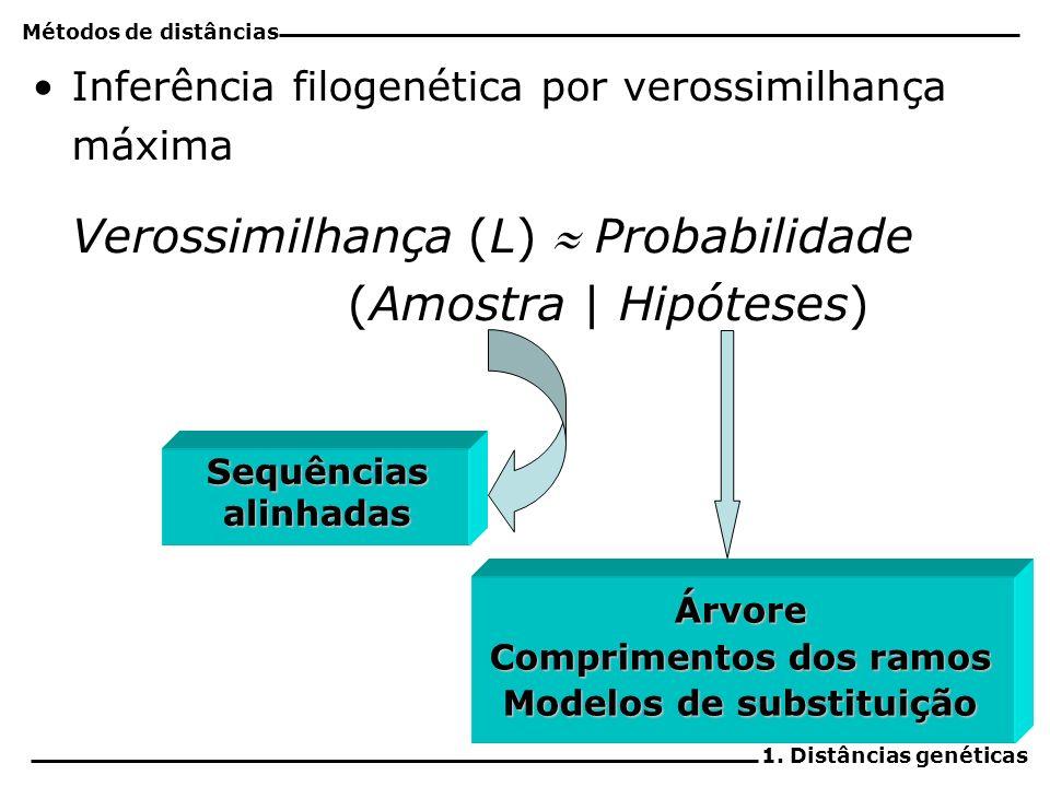 Comprimentos dos ramos Modelos de substituição