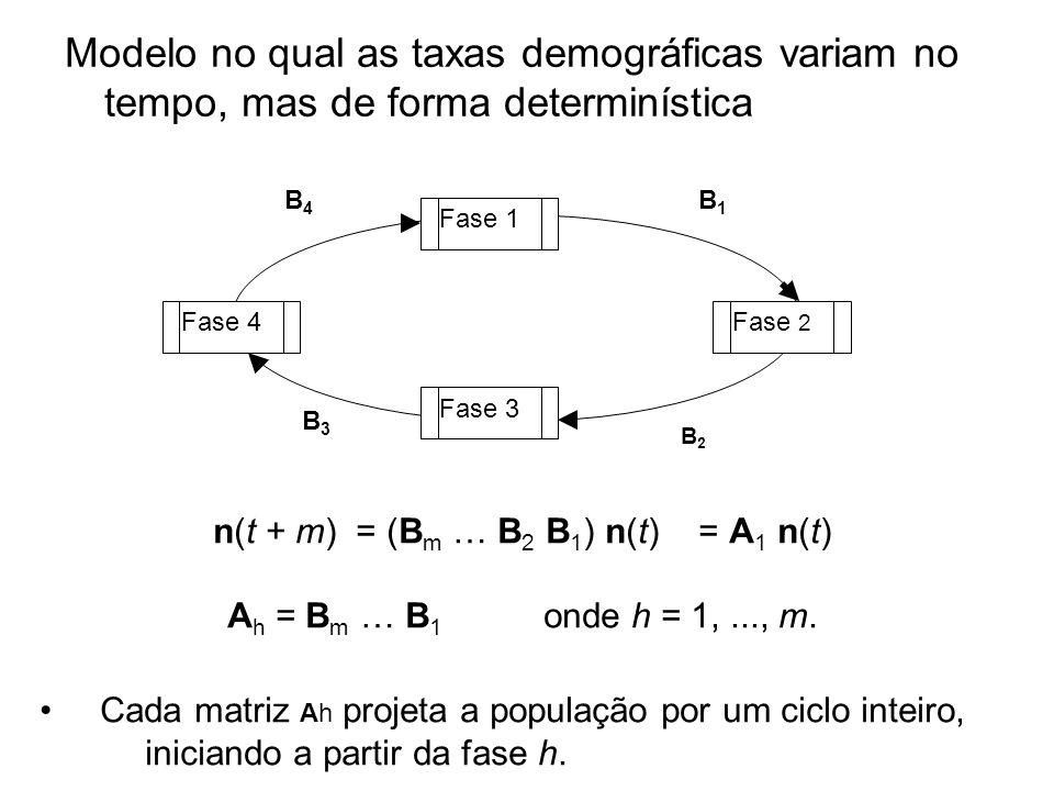 n(t + m) = (Bm … B2 B1) n(t) = A1 n(t)