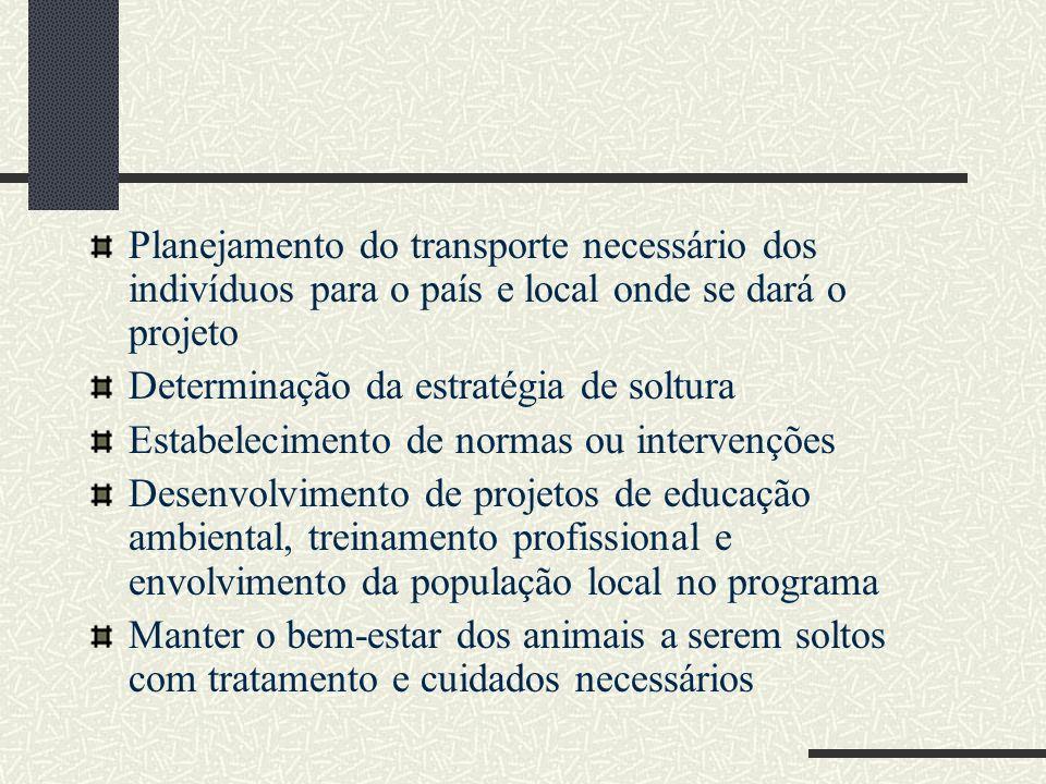 Planejamento do transporte necessário dos indivíduos para o país e local onde se dará o projeto