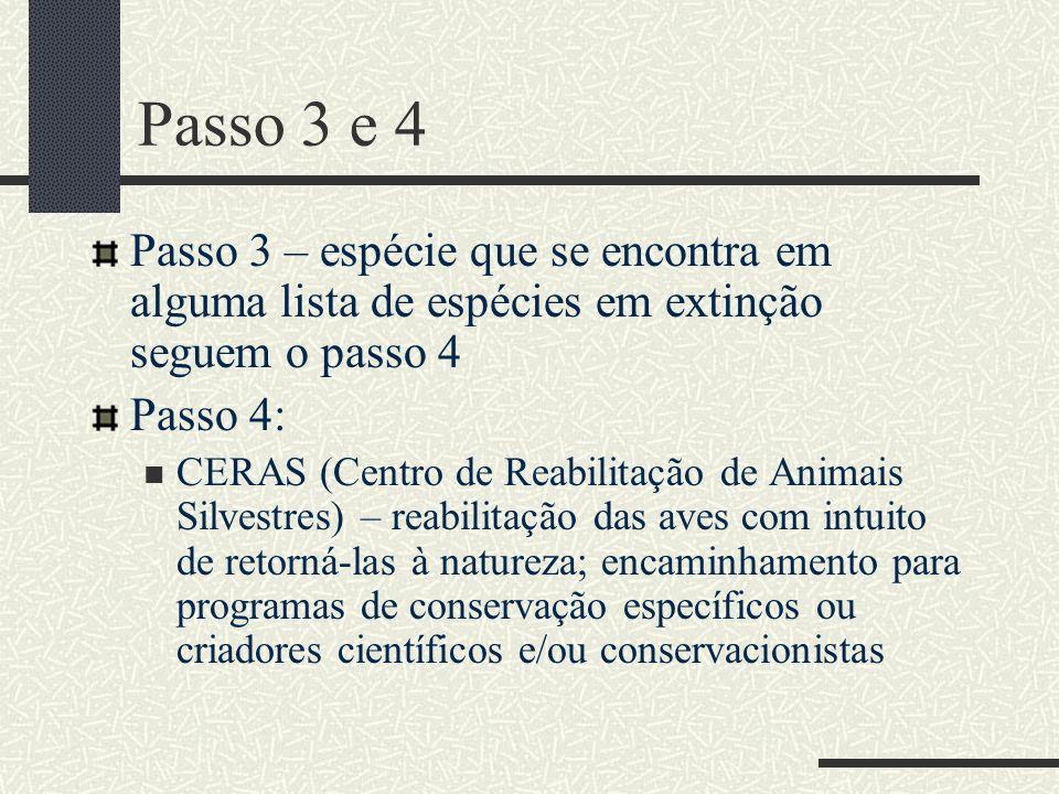 Passo 3 e 4 Passo 3 – espécie que se encontra em alguma lista de espécies em extinção seguem o passo 4.