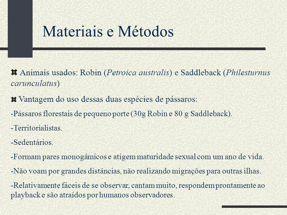 Materiais e Métodos Animais usados: Robin (Petroica australis) e Saddleback (Philesturnus carunculatus)