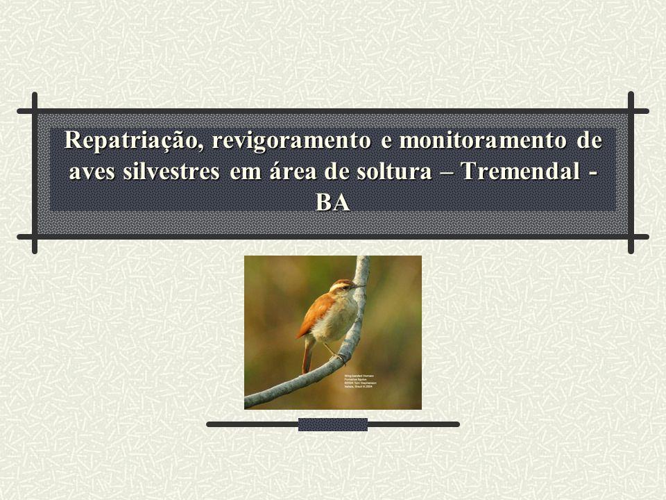 Repatriação, revigoramento e monitoramento de aves silvestres em área de soltura – Tremendal - BA