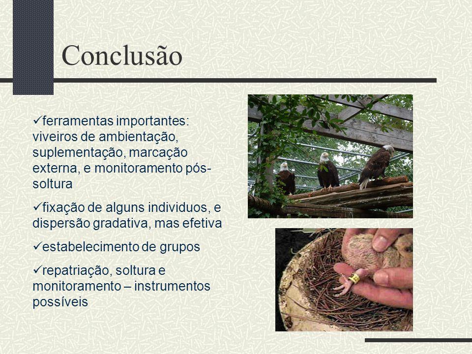 Conclusão ferramentas importantes: viveiros de ambientação, suplementação, marcação externa, e monitoramento pós-soltura.
