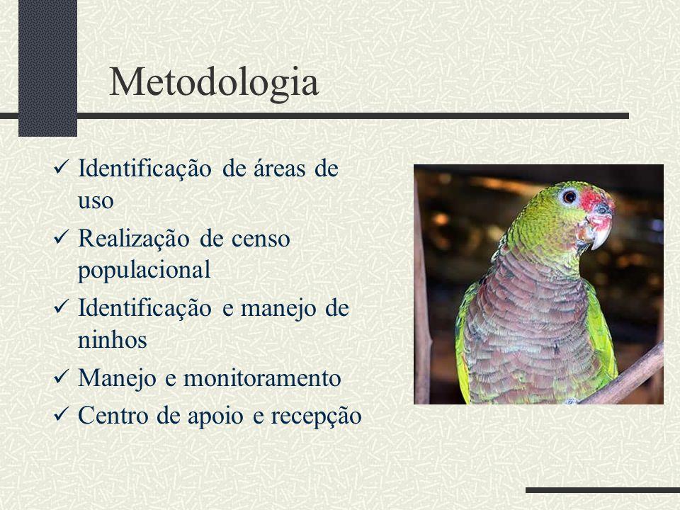 Metodologia Identificação de áreas de uso