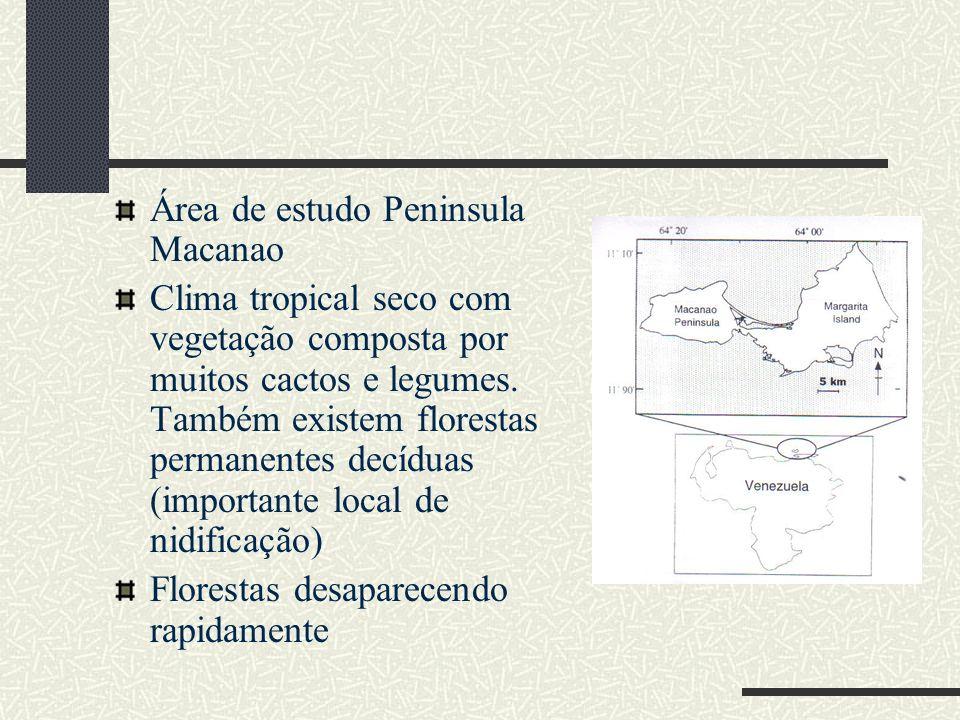 Área de estudo Peninsula Macanao
