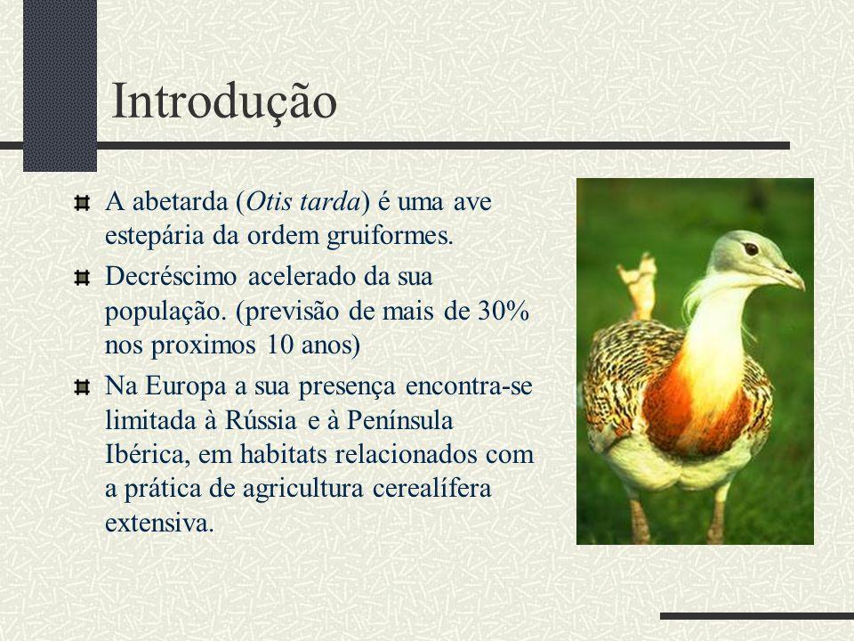 Introdução A abetarda (Otis tarda) é uma ave estepária da ordem gruiformes.
