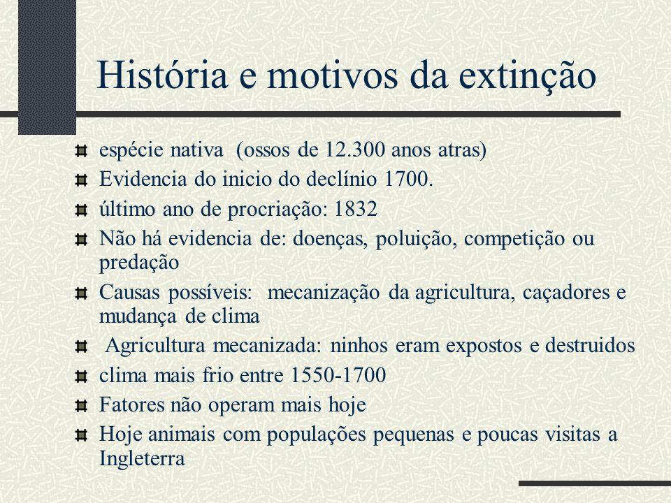 História e motivos da extinção