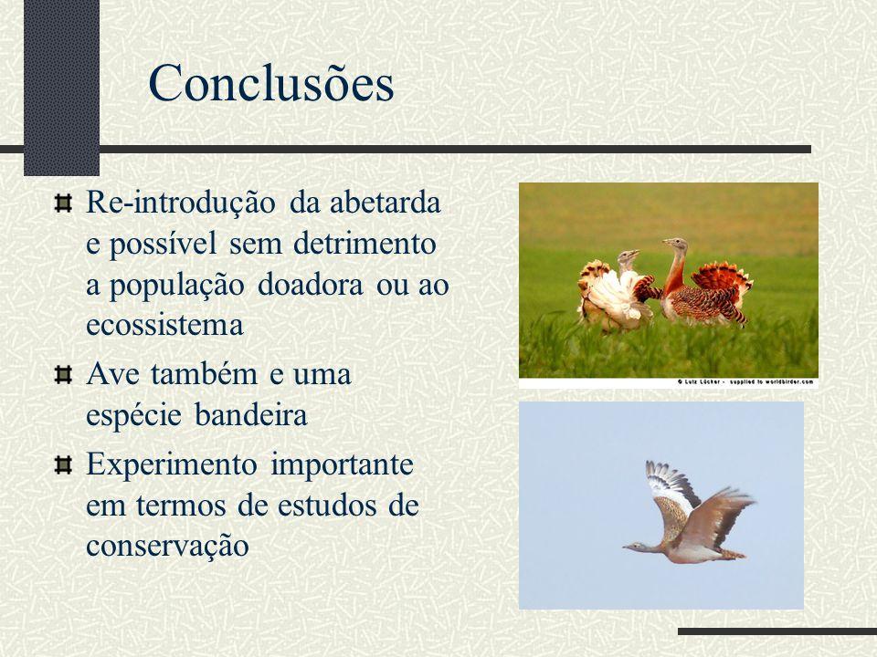 Conclusões Re-introdução da abetarda e possível sem detrimento a população doadora ou ao ecossistema.