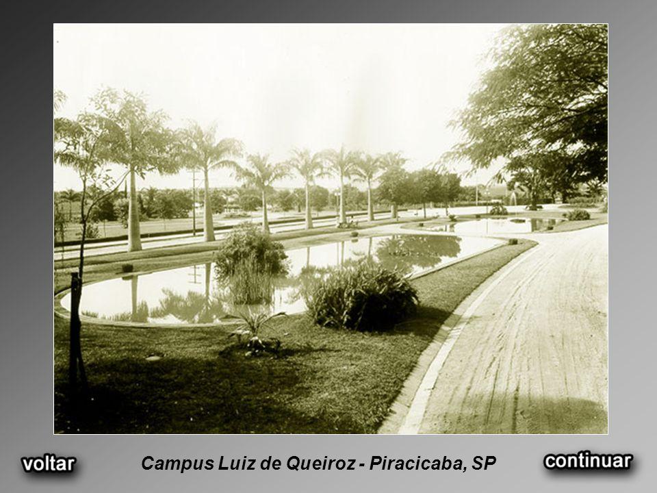 Campus Luiz de Queiroz - Piracicaba, SP