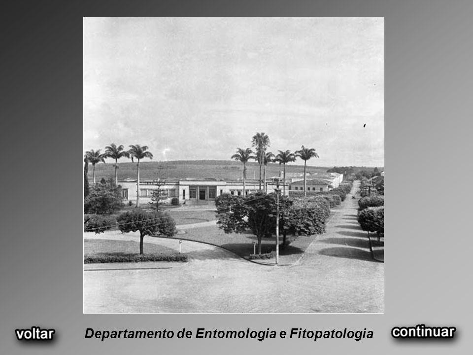 Departamento de Entomologia e Fitopatologia