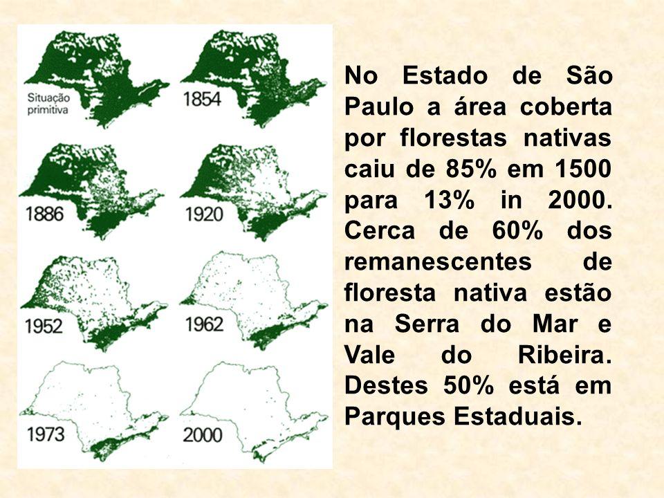 No Estado de São Paulo a área coberta por florestas nativas caiu de 85% em 1500 para 13% in 2000.