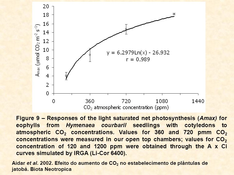 Figure 9 – Responses of the light saturated net photosynthesis (Amax) for eophylls from Hymenaea courbaril seedlings with cotyledons to atmospheric CO2 concentrations. Values for 360 and 720 pmm CO2 concentrations were measured in our open top chambers; values for CO2 concentration of 120 and 1200 ppm were obtained through the A x Ci curves simulated by IRGA (Li-Cor 6400).
