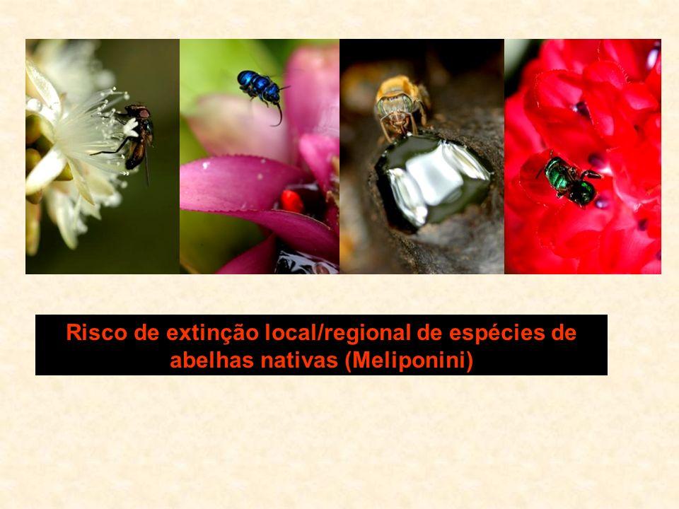 Risco de extinção local/regional de espécies de abelhas nativas (Meliponini)