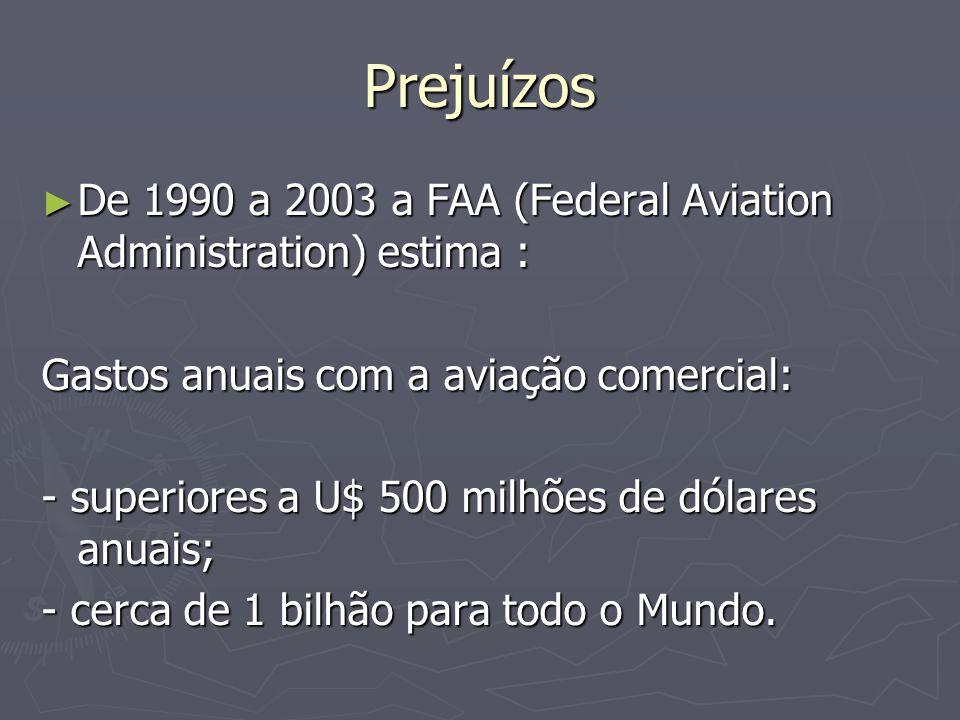Prejuízos De 1990 a 2003 a FAA (Federal Aviation Administration) estima : Gastos anuais com a aviação comercial: