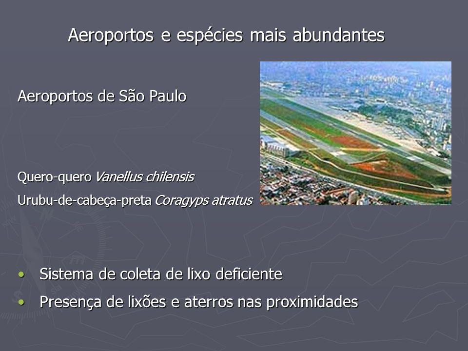 Aeroportos e espécies mais abundantes