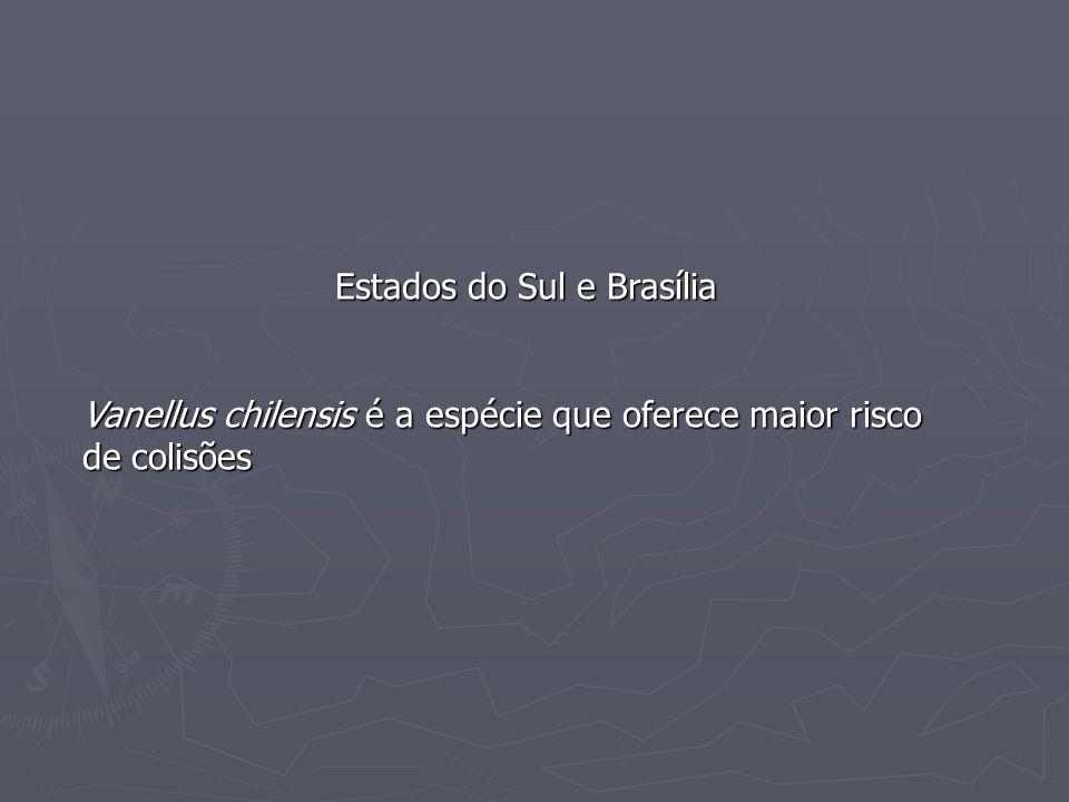 Estados do Sul e Brasília